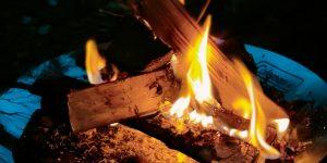 焚火の写真